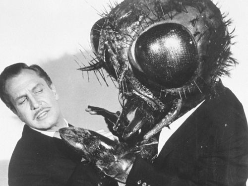 The Fly; Vincent Price 1958    What is a Halloween season post without Vincent Price? My all time favorite scene in this movie is when Francois and Inspector Charas have just witnessed the horrific incident in the garden and Charas smashes the web, spider and screaming fly/Andre thing asunder…  Inspector Charas: You Saw it, you saw it didn't you?!  Francois: Yes, I…I saw it, I thought she was…  Inspector Charas: As God is my witness, I saw the Thing! it's unbelievable,