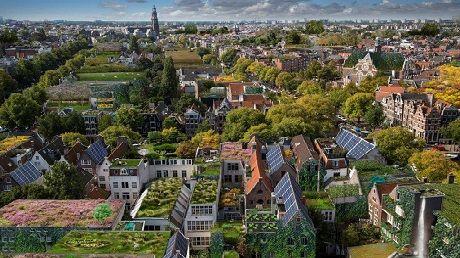 Droombeeld groene daken en gevels, foto Alice Wielinga