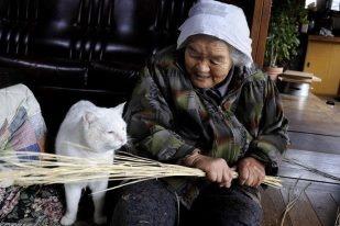 Miyoko Ihara has been taking photographs of her grandmother, Misao and her beloved cat Fukumaru since their relationship began in 2003. Their closeness has been captured through a series of lovely photographs. 11-30-12 / Miyoko Ihara
