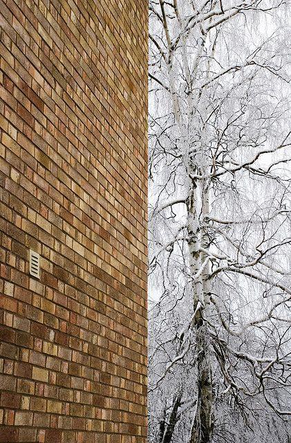 Human vs Nature