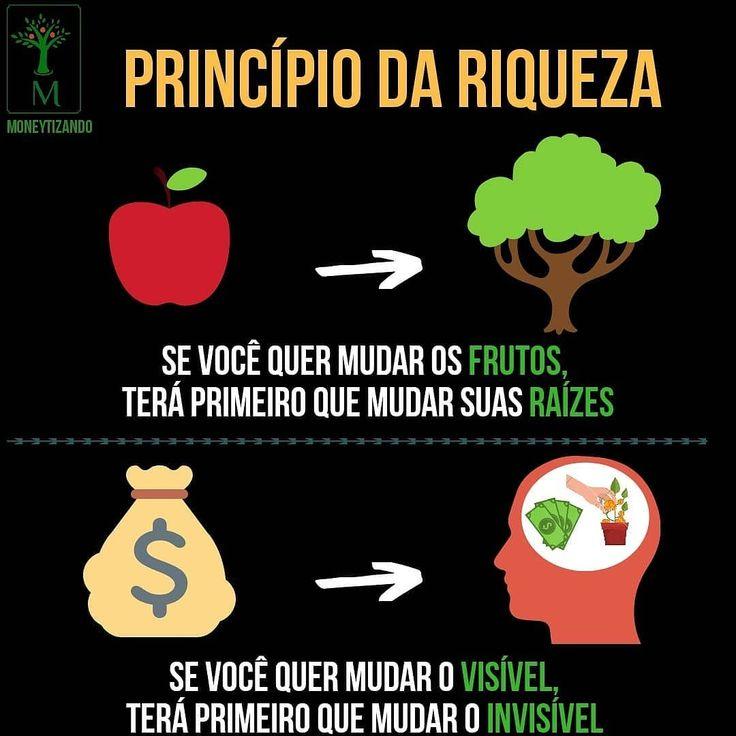 Princípio da riqueza