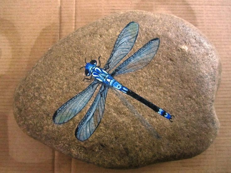 blue dragonfly  - I need to learn to paint (well, paint like this).
