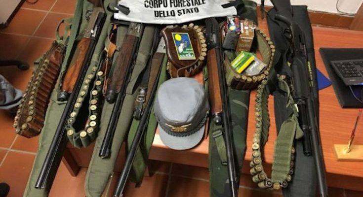 Bracconaggio: 5 cacciatori di Luzzi denunciati per aver introdotto armi nel Parco della Sila