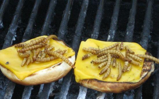Open sandwich of tiptera BBQ steaks