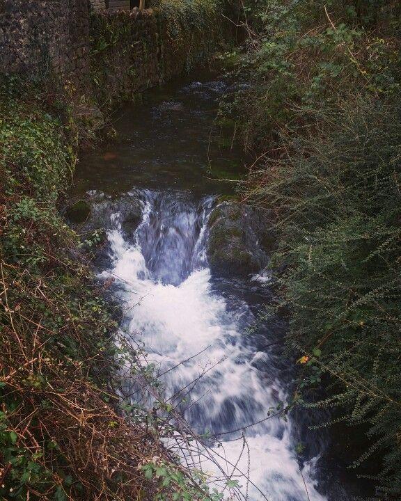 Cheddar gorge  stream