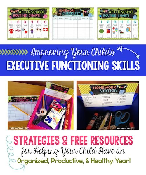 We'd like to welcome Shelley Galvin, OTR/L, C/NDT and Patricia Pooler, MS, OTR/L from Tools to Grow for today's post about kids and executive functioning -- keeping kids organized and productive!