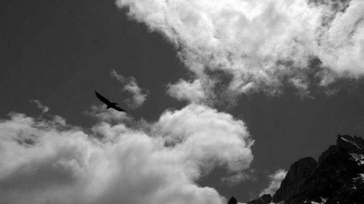 Il condor strappa gli occhi al sole e fa cadere, fa cadere fuoco sulla terra. All'ombra di pesanti ali nessun grido chiama alla battaglia e la mano resta paralizzata. Come si chiama la bramosia d'oro, di sangue e di morte che nessuno mai aveva visto? E grigie piume cadono sulla fronte, la notte è così vicina. El condor pasa.  (Canzone Inca)