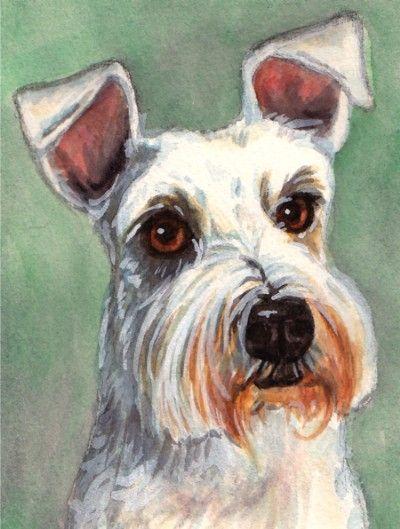 I love terriers <3