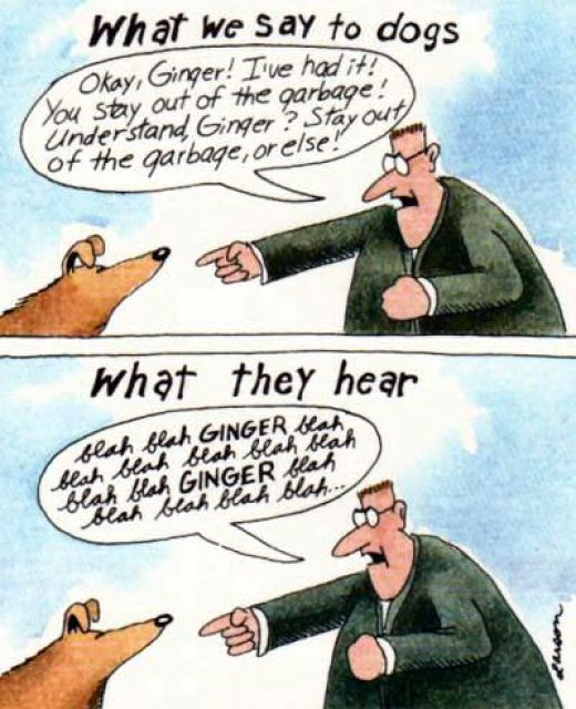 The Far Side - Gary Larson - What We Say To Dogs - What They Hear