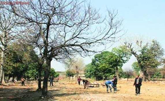 Land auction put off to avoid standoff between Dalit groups