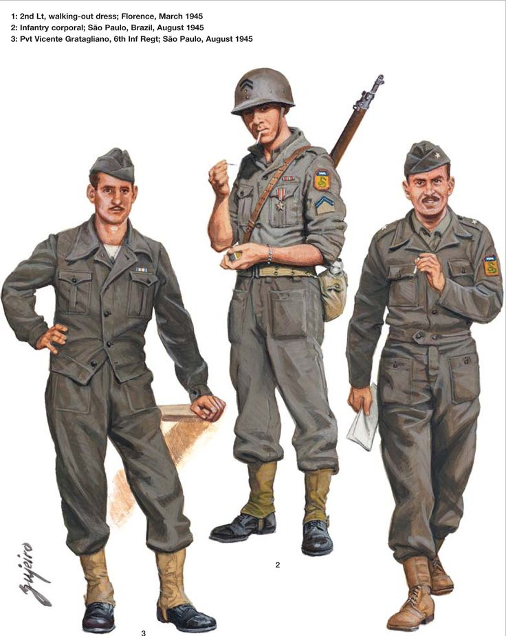 What does non-expeditionary forces mean?
