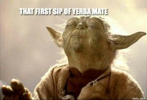 first sip of yerba mate