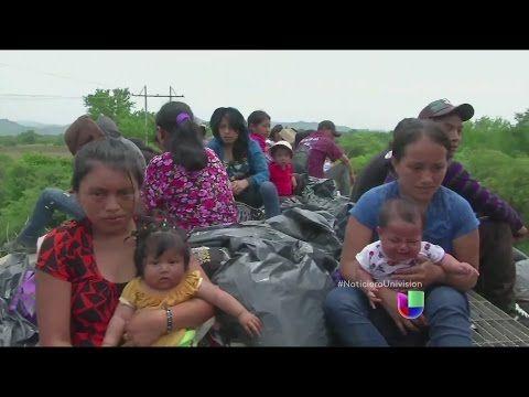 A bordo de 'La Bestia', el tren que trae a inmigrantes al país de la oportunidades - YouTube
