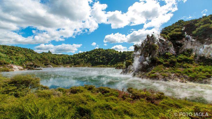Amoklauf Neuseeland Video Pinterest: Die Besten 25+ Neuseeland Nordinsel Ideen Auf Pinterest
