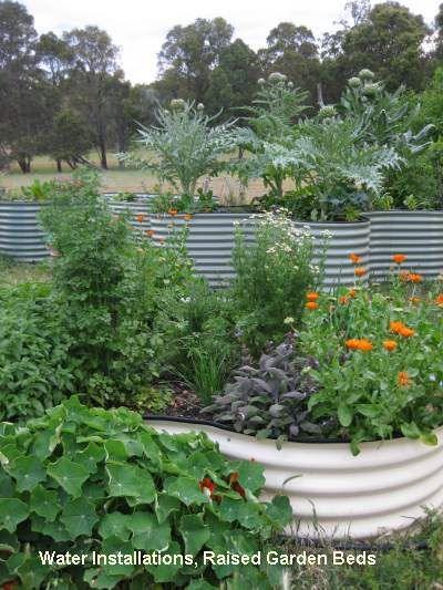 123 best images about raised beds on pinterest gardens for Garden bed designs australia