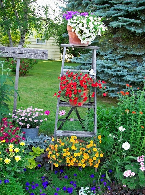 Vintage ladder in the flower garden