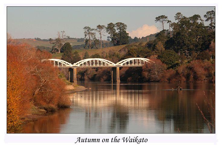 autumn ~ Tuakau Bridge, near Mercer, North Island, NZ