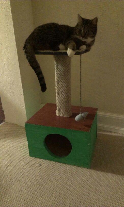 Hjemmelavet kattehus