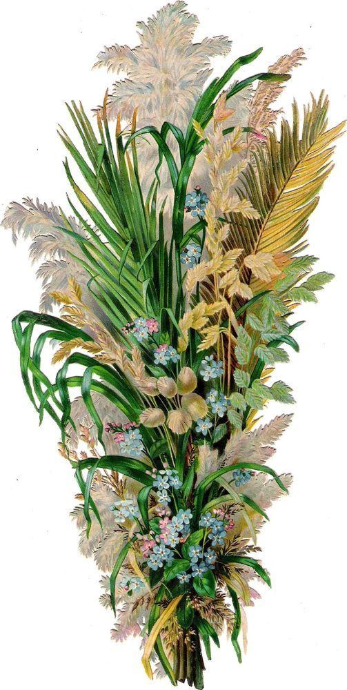 Oblaten Glanzbild scrap die cut chromo  Gras Gräser  XL 28cm   Wild Blumen