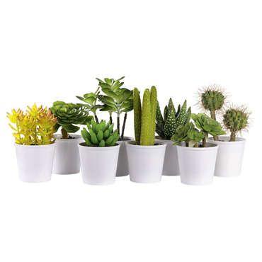 les 25 meilleures id es concernant plantes artificielles. Black Bedroom Furniture Sets. Home Design Ideas