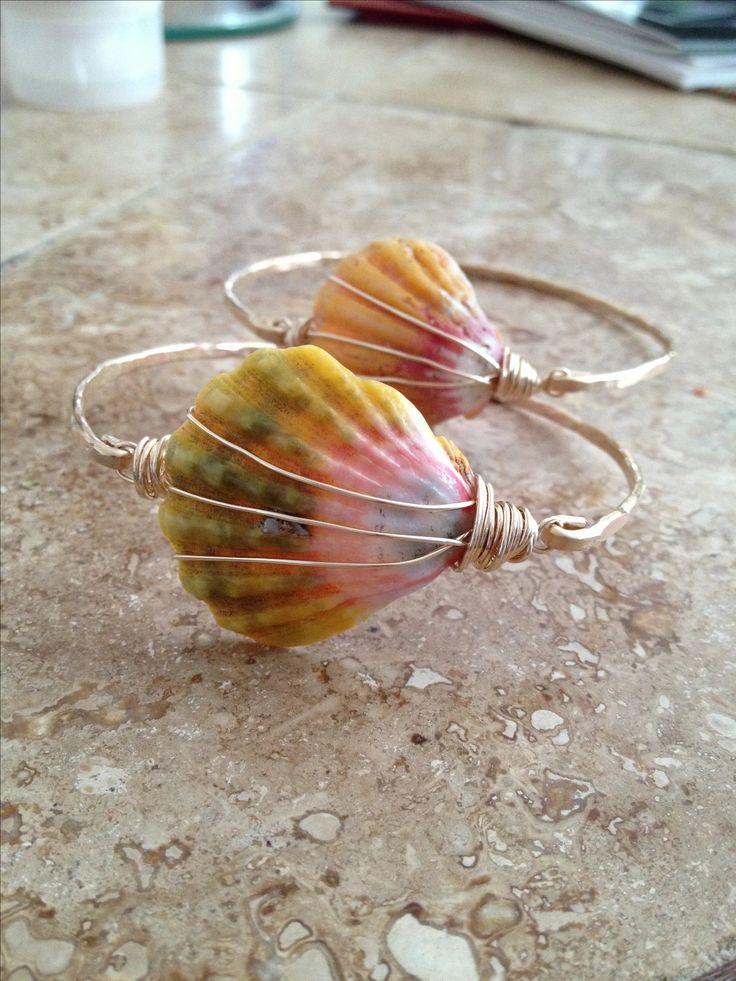 Rare Hawaiian Sunrise Shell Bangles in 14kt gold fill.