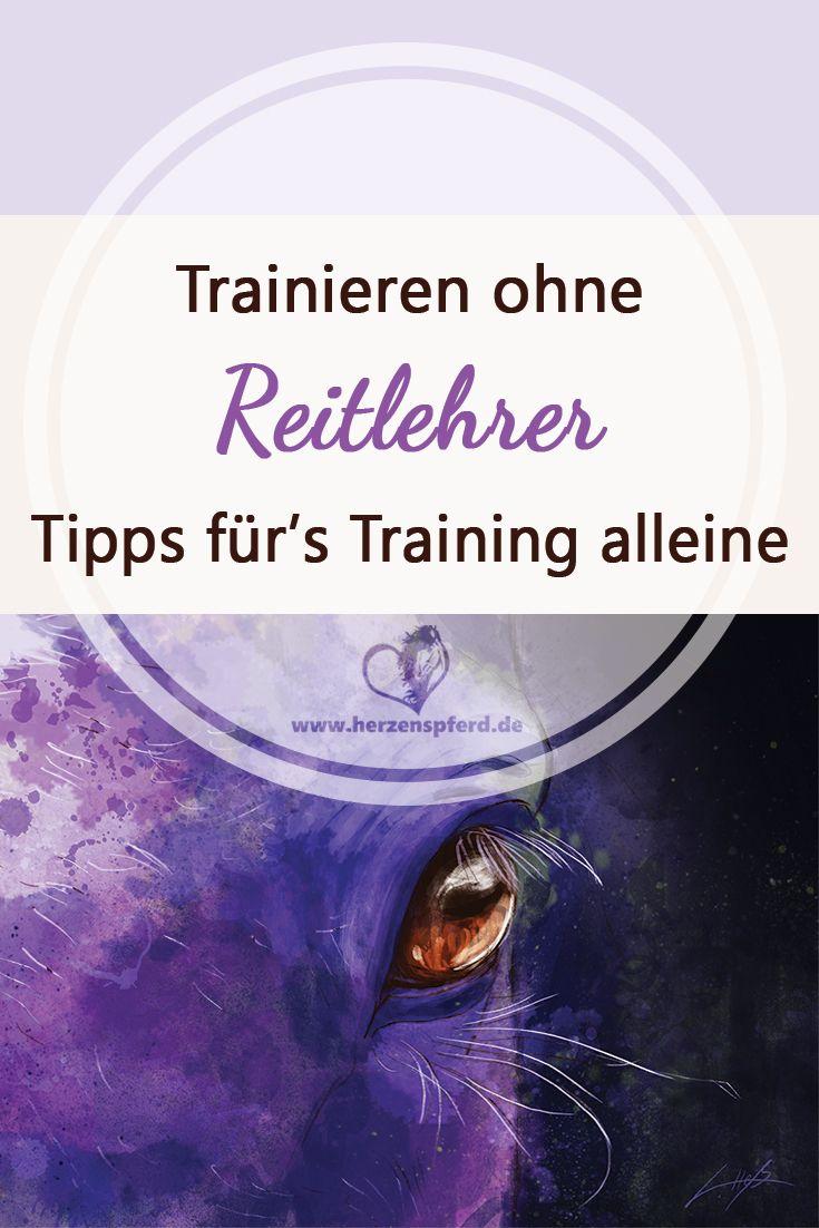 Trainieren ohne Reitlehrer - 4 Tipps wie Du erfolgreich alleine trainieren kannst.