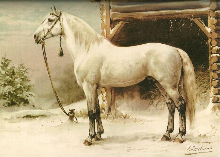 otto eerelman | Otto Eerelman (1839-1926) » Stamboom Helmantel » Genealogie Online