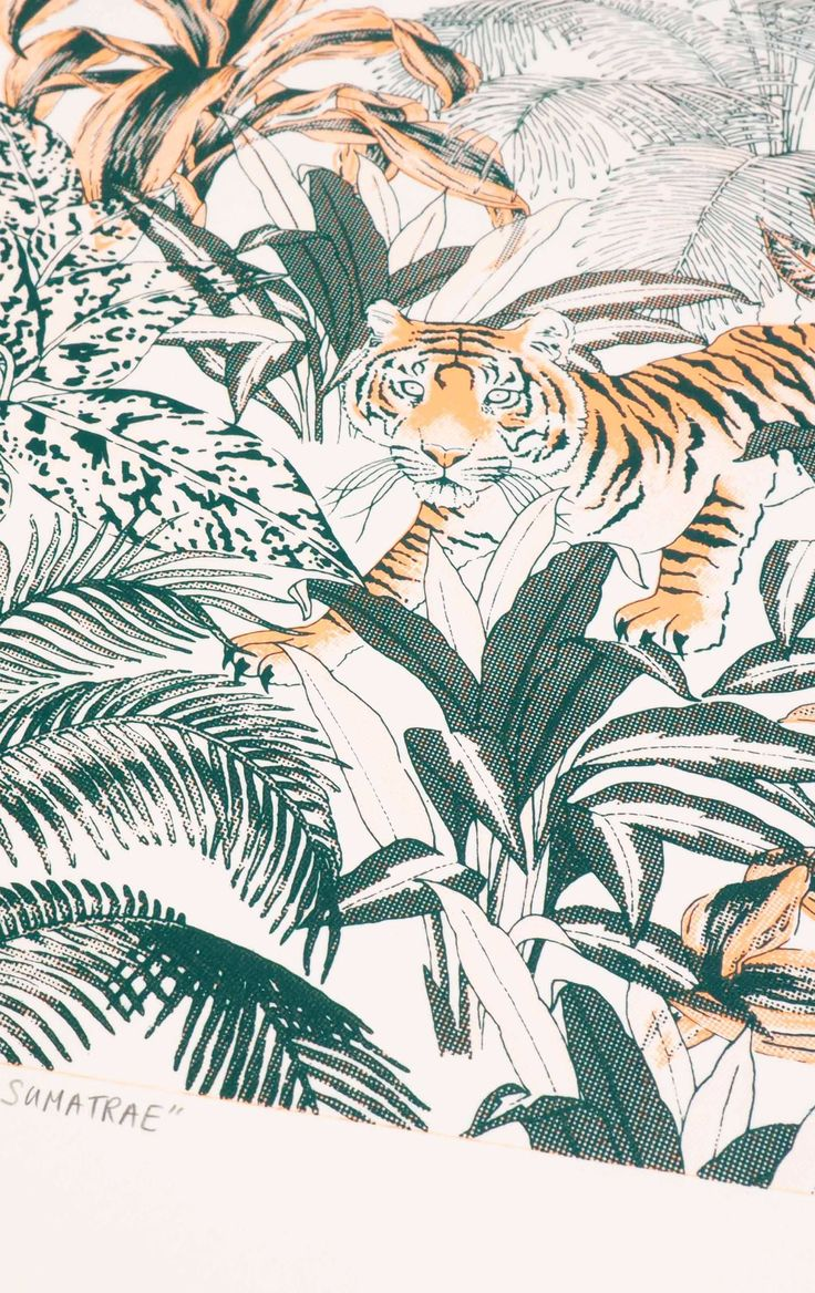 Tiger Jungle two colour screen print by Jacqueline Colley