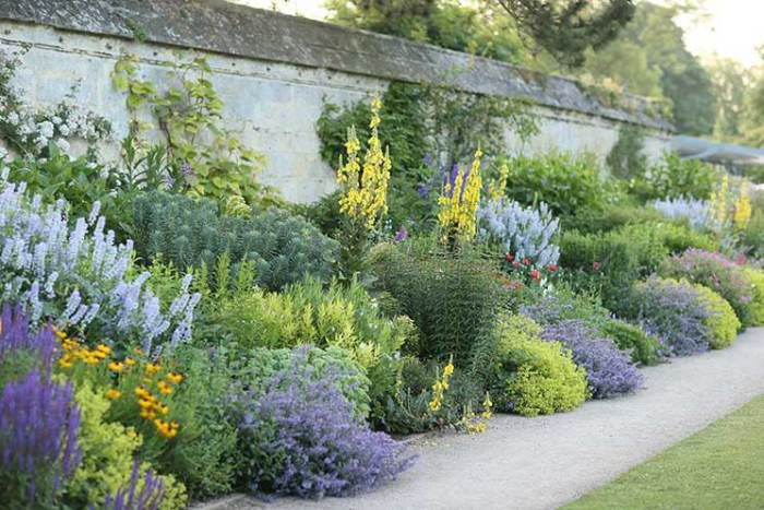 Herbaceous border at Oxford University. Pic credit: Timothy Walker