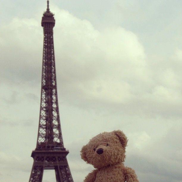 Viva #bastilleday from www.teddybearlife.com #bastille #paris #france #eiffeltower #eiffel #tower #revolution #celebration #independence #republic #democracy #egalite #liberty #fraternity #teddy #teddies #teddybear #instabear #socute #softtoy #holiday #travel