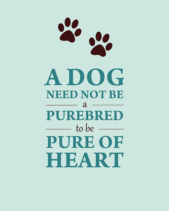 """A dog need not be purebred to be pure of heart"" http://www.etsy.com/listing/104415692/mixed-breed-dog-pure-of-heart-sign"