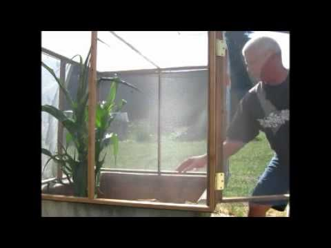 ▶ Success with our Black Soldier Fly Larvae (BSFL) pupation bin - YouTube