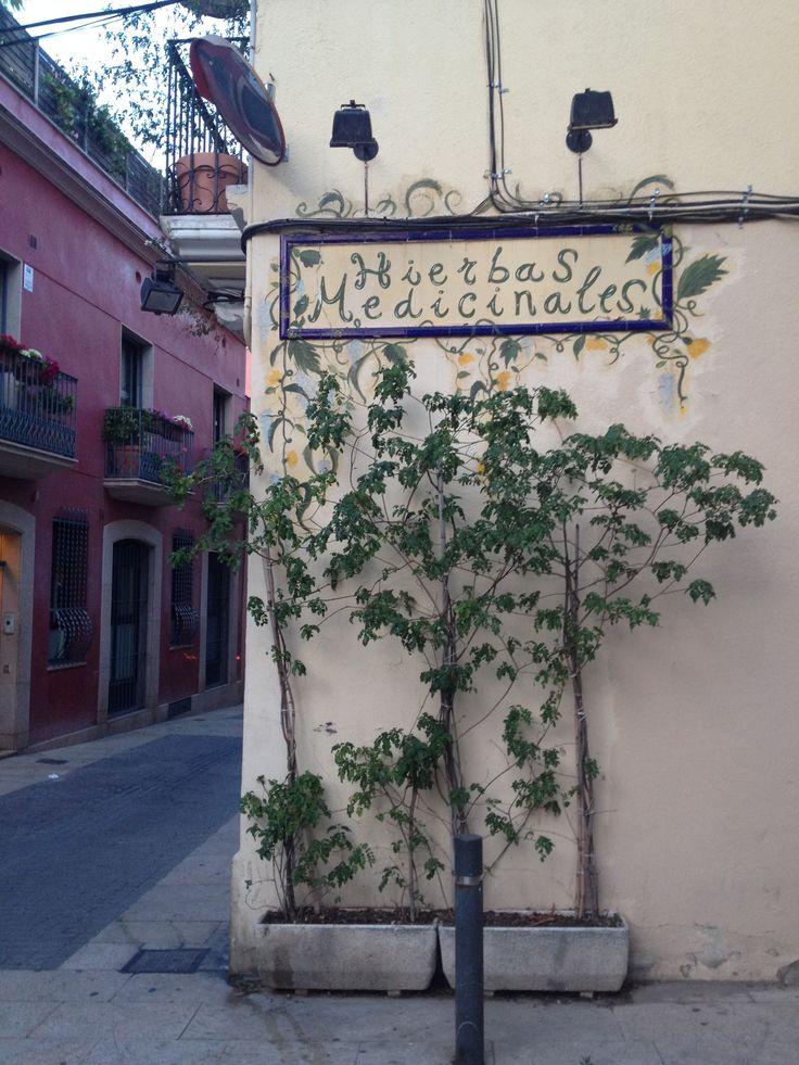 Fotografía tomada en un rincón de Horta, Barcelona
