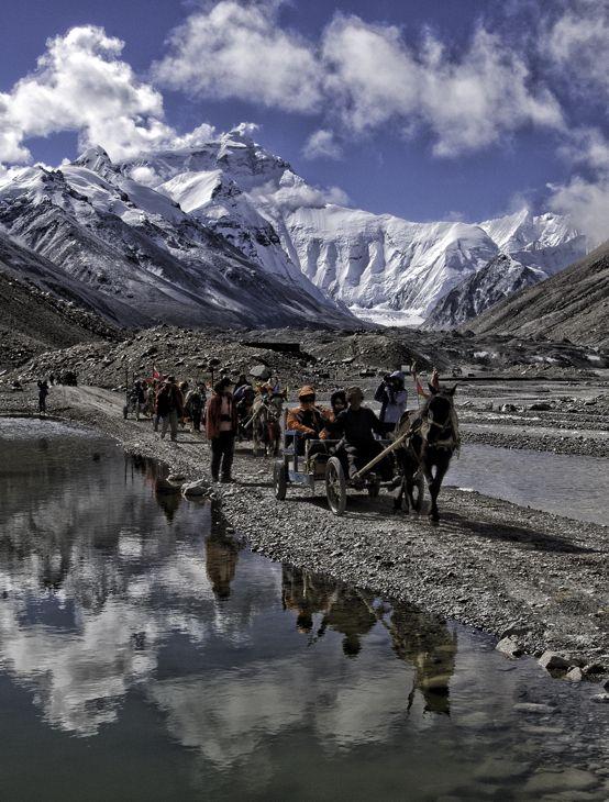 Pony carts carry tourists back from a morning of sight seeing at the Mt Everest Base Camp in Tibet.