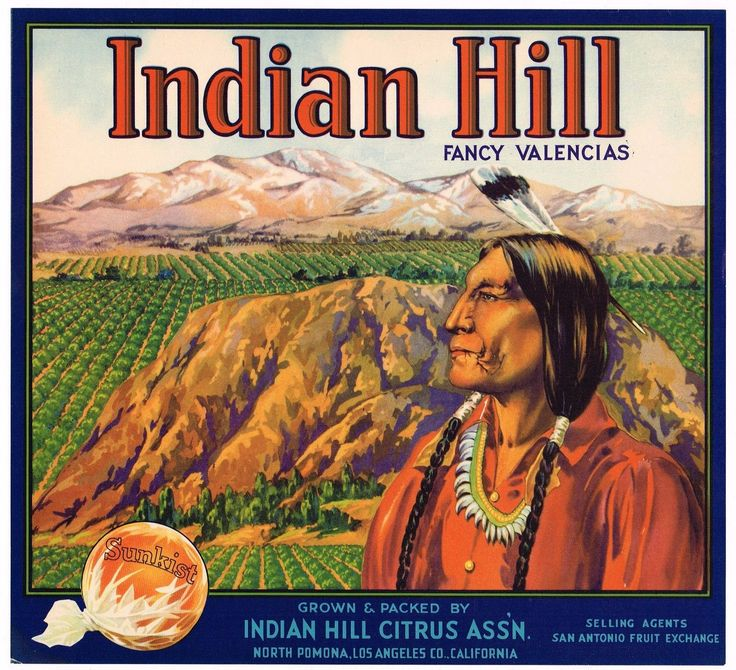 ORANGE CRATE LABEL AMERICAN INDIAN HILL POMONA CALIFORNIA 1930S VINTAGE ORIGINAL | eBay