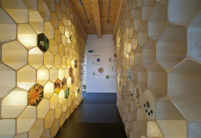 Kudy z nudy - Muzeum Včelí svět v Hulicích