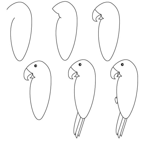 animales dibujar facil step | como dibujar un loro paso a paso facilmente