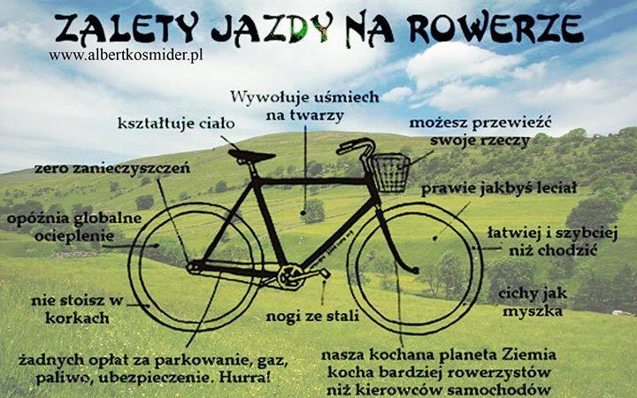 Happy Active Lifestyle: Cardio: Zalety biegania,rowerowania,rolkowania i pływania.