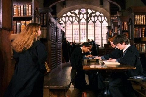 Hogwarts library: Pop Culture, Hogwarts Interiors, Harry Potter Series, Schools, Bodleian Libraries, Beautiful Libraries, Hogwarts Castles Interiors, Oxfords Hogwarts, Hogwarts Libraries