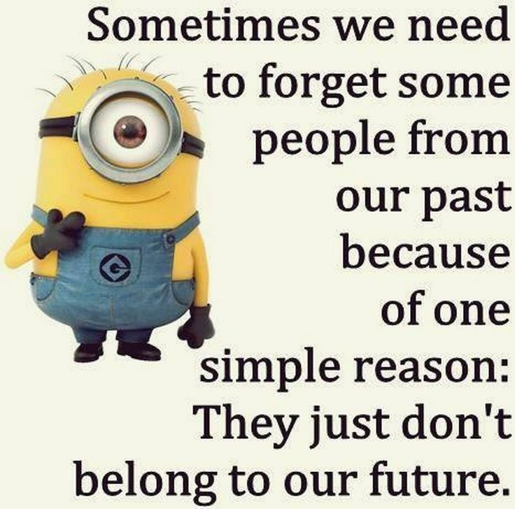 Funny Minions From Nashville (06:52:48 PM, Sunday 28, August 2016 PDT)   30  Pics