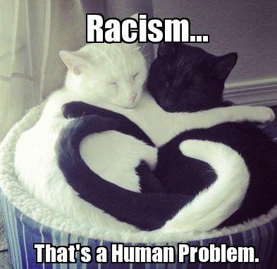Interracial Love Sayings   Interracial Relationship Quotes Interracial relationships