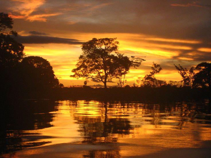 Pantanal Brazil | Spiegelbeeld In De Pantanal (4) – Brazilië, Brazilië ...