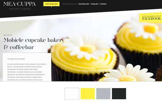 Pick The Perfect Website Color Combination   3 Different Methods