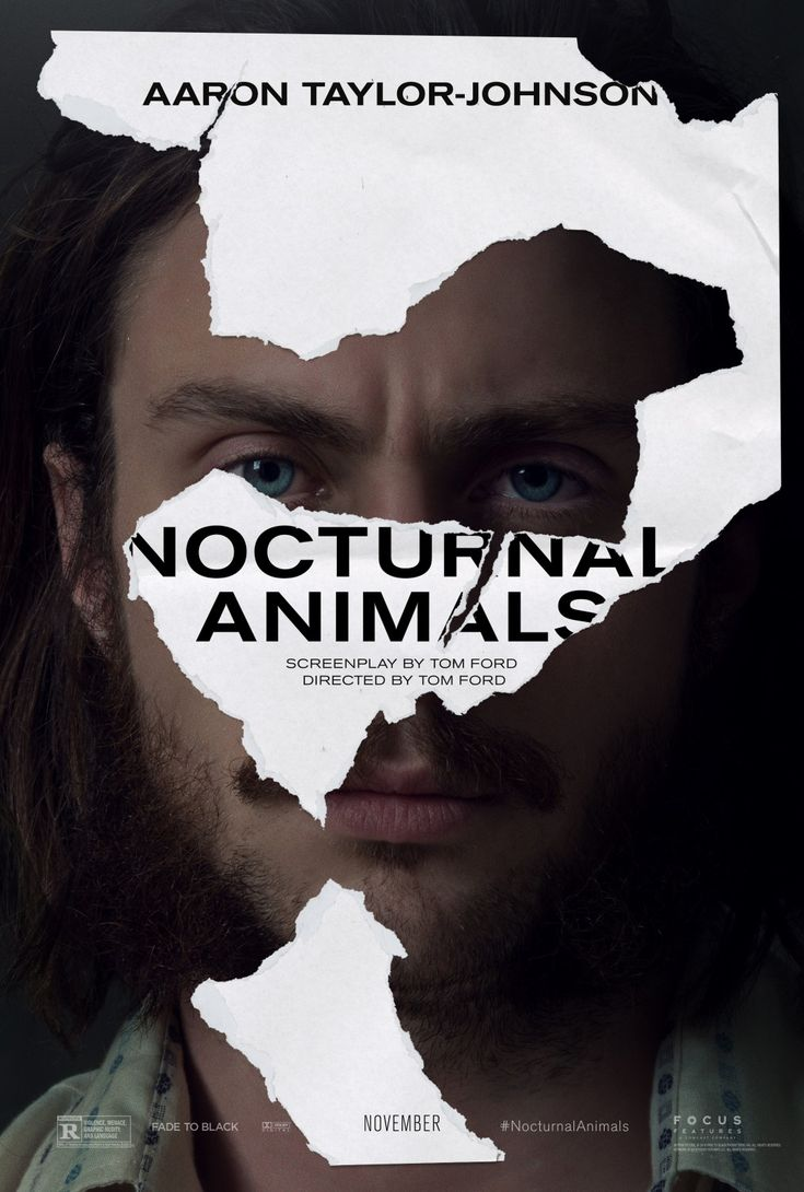 Return to the main poster page for Nocturnal Animals (#2 of 4)