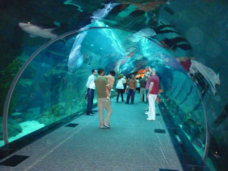 #Dubai #Holiday #Packages http://www.destinationtravels.in/dubai.html