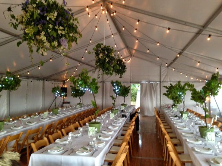 marquee structure, festoon lighting, wooden padded folding chairs, banquet tables, integrated timber flooring, south coast weddings, marquee weddings, south coast party hire