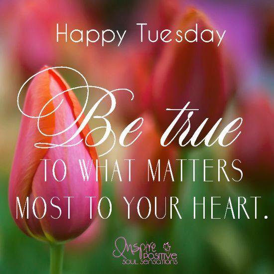 Happy Tuesday Eᐯeᖇyᗪᗩy ᒪittᒪe ᔕeᑕᖇetᔕ Oᖴ ᒍoy 2016