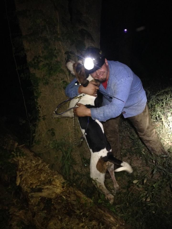 Handler hugs Shin Dig, a Treeing Walker Coonhound, after he trees a raccoon