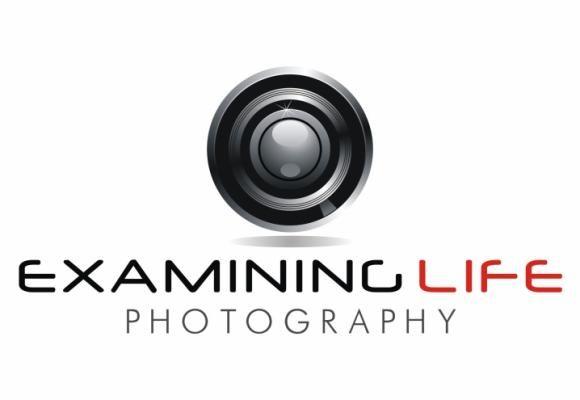 logo fotography - Google zoeken