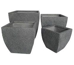 Mason Milan ultralite fibreclay pots x 2 for front courtyard with cordyline or streliztia for height and privacy